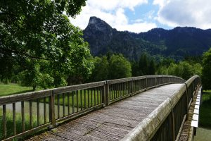 adventure-boardwalk-bridge-276237
